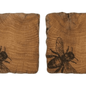 Oak wood bee drinks coasters x 2